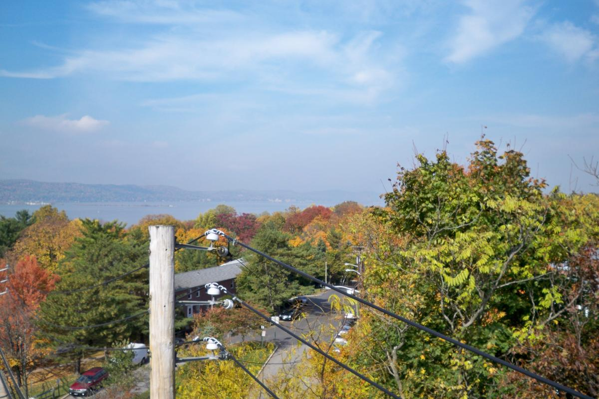 View above Autumn-colored Trees